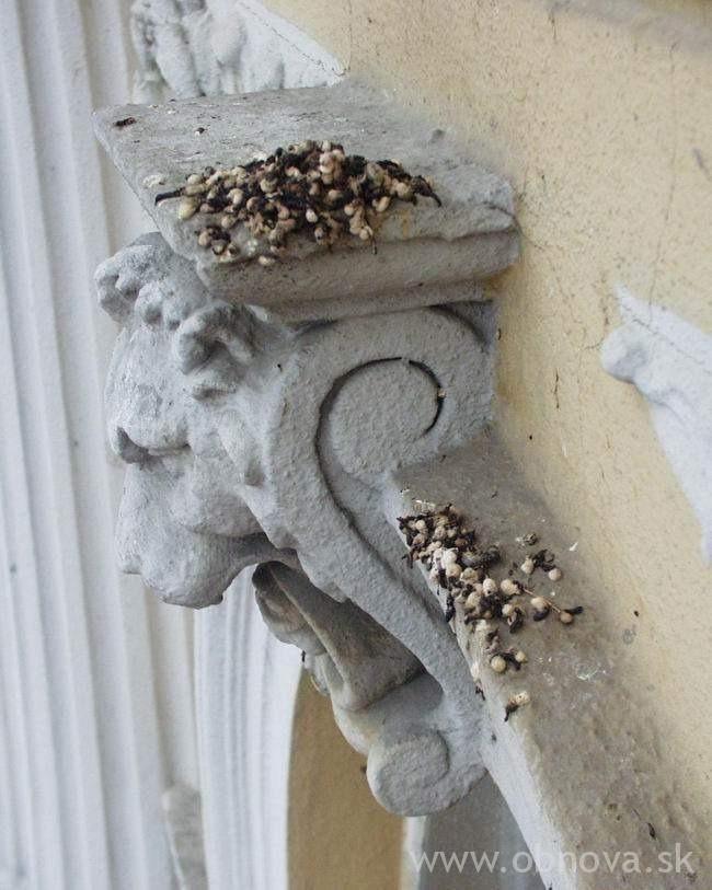 narodny-dom2002-31