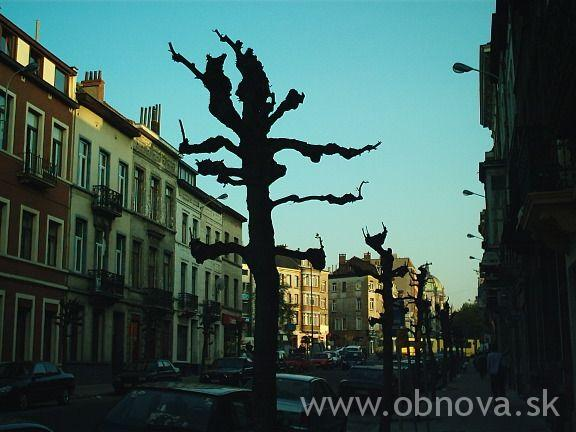brusel2003leto008
