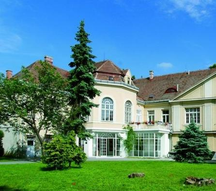 Galéria Jána Koniarka v Trnave, Kopplova vila