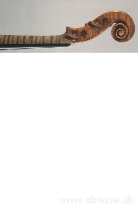 2664117 Stradivari-1710-exSmith-Schnecke