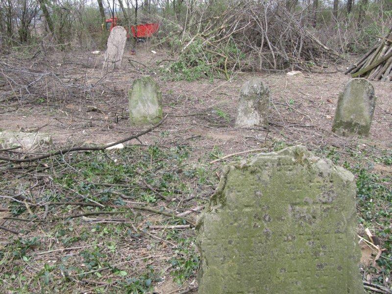 Židovský cintorín Nitra-Janíkovce (leustach.sk)