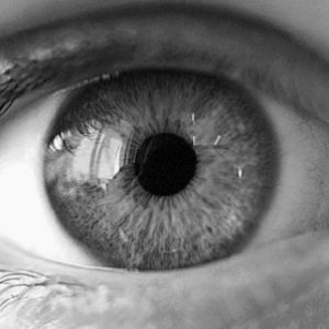 Profilová fotografia oko